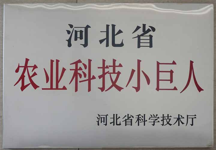河北省农业科技小巨人.jpg